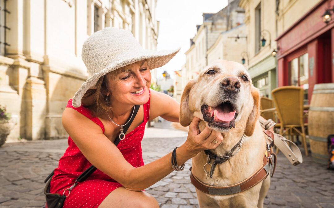 Comment faire garder ses animaux lors d'un départ en voyage